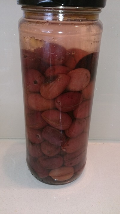 black olives, how to preserve olives, home-made olives