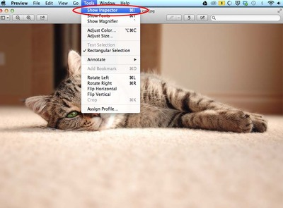 EXIF Data in Preview OSx