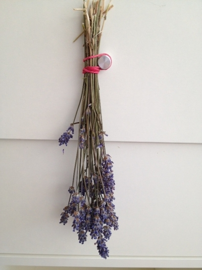 lavender, dry, scent, craft